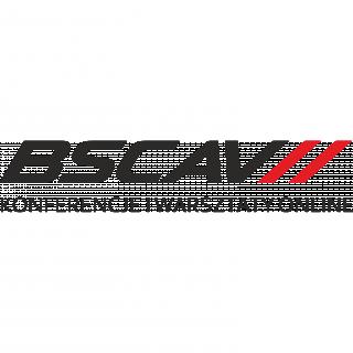 BSCAV