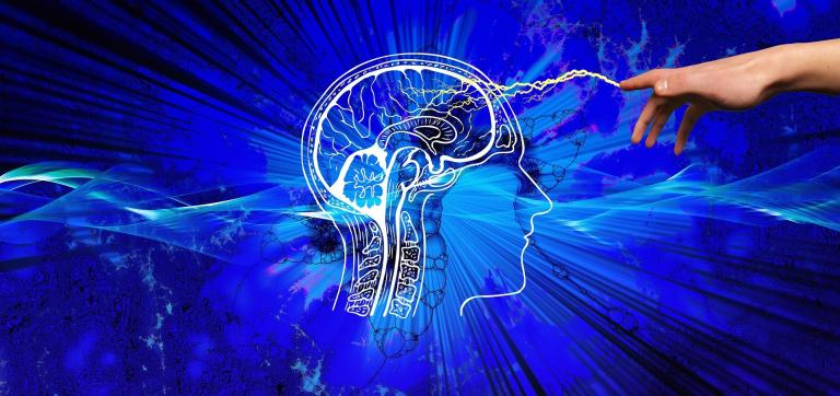 Pozytywny wpływ programowania na mózg człowieka. Badania to potwierdzają!